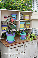 63821-20403 Potting bench with containers and flowers in spring, Marion Co. IL