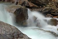 Glacier Creek. West Kootenay, BC.