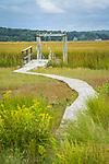 Madison, CT. East River Marsh area. Neck River private boardwalk.