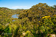 Image Ref: CA485<br />