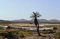 Tal des Rio Norte, Boa Vista, Kapverden, Afrika