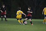 Germantown Legends Black vs. Soccer Ole at Mike Rose Soccer Complex in Memphis, Tenn. on Tuesday, April 11, 2017. The Germantown Legends Black won 5-0.