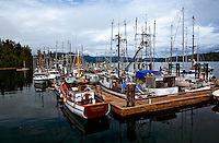Commercial fishing vessels lying in moorage adjacent to the government dock in Sooke, British Columbia.
