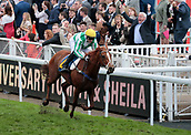 June 10th 2017, Chester Racecourse, Cheshire, England; Chester Races Horse racing; Al Destoor with David Nolan on board win the final race of the day