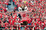 November 14, 2009: Wisconsin Badgers mascot Bucky Badger celebraes during an NCAA football game against the Michigan Wolverines at Camp Randall Stadium on November 14, 2009 in Madison, Wisconsin. The Badgers won 45-24. (Photo by David Stluka)