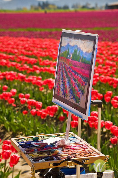 Roozengaarde Tulip Bulb farm, Mount Vernon, WA.  Artist canvas with painting