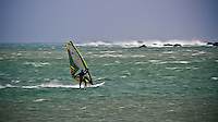 A windsurfer flies across the water at Lyall Bay, Wellington, New Zealand
