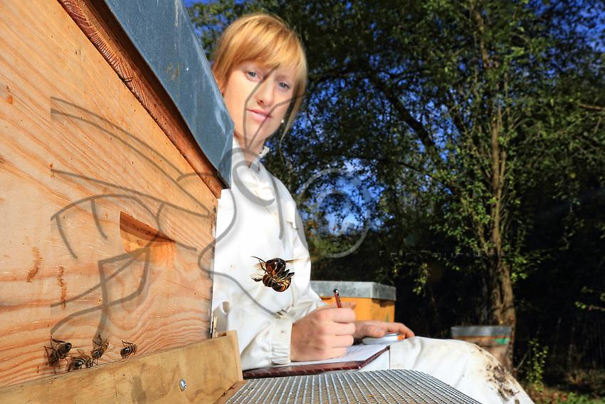 The apiculturist Lucie Hotier testing a protective claw against the Asian hornet.<br /> CNRS. Universit&eacute; Paul Sabatier. Toulouse, France. Test de griffe de protection contre les frelons asiatiques par l&rsquo;apicultrice Lucie Hotier.