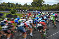 Circuit of Champions, stage five of the 2019 Grassroots Trust NZ Cycle Classic UCI 2.2 Tour from Cambridge, New Zealand on Sunday, 27 January 2019. Photo: Dave Lintott / lintottphoto.co.nz
