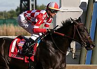 09-15-18 Pocahontas Stakes Churchill