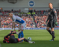 Brighton & Hove Albion's Anthony Knockaert (right)  checks up on Bournemouth's Adam Smith (left) after a dangerous challenge resulting in a red card <br /> <br /> Photographer David Horton/CameraSport<br /> <br /> The Premier League - Brighton and Hove Albion v Bournemouth - Saturday 13th April 2019 - The Amex Stadium - Brighton<br /> <br /> World Copyright © 2019 CameraSport. All rights reserved. 43 Linden Ave. Countesthorpe. Leicester. England. LE8 5PG - Tel: +44 (0) 116 277 4147 - admin@camerasport.com - www.camerasport.com
