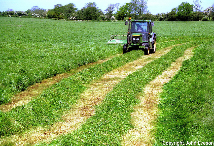 Mowing grass for silage, Cheshire.