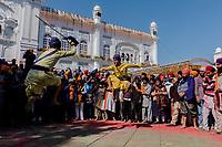 ANANDPUR SAHIB, INDIA - March 06, 2015: Nihangs perform during Hola Mohalla on March 06, 2015 in Anandpur Sahib, India. <br /> <br /> Daniel Berehulak for The New York Times
