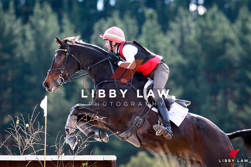 Dannie Lodder rides Balmoral Henton during the Bates NZ CCI2* Championship Cross Country at the 2017 NZL-NRM National Three Day Event Championships. National Equestrian Center, Taupo. Saturday 13 May. Copyright Photo: Libby Law Photography