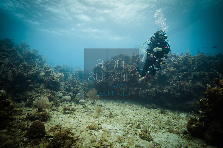 Scuba diver on Roatan reef on March 28, 2015.
