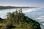 Overlooking wide sand beach along the Pacific coast at Yaquina Head, near Newport, Oregon.