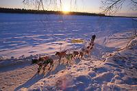 C Knott Arriving McGrath Sunrise 34 Below Iditarod 99 AK