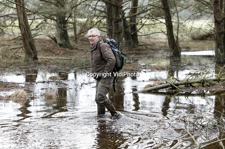 """Foto: VidiPhoto<br /> <br /> HOENDERLO – Toeristen nemen vrijdag massaal de gelegenheid om een bijzonder natuurfenomeen te bekijken. Voor het eerst in jaren """"stroomt het water als een dolle"""" door de heidebeek op de Hoge Veluwe. Boswachter Henk Ruseler (foto) spreekt van een unieke situatie. Dit komt bijna nooit voor. Waar de het water tijdens normale 'natte' perioden rustig langs de stuwwal van het Deelense Veld meandert, stroomt het dankzij de natste februari ooit als nooit tevoren. De afgelopen jaren stond de beek zelfs helemaal droog. Die droogte behoort zelfs op de Veluwe en de Achterhoek nu tot het verleden. De andere gebieden in ons land zijn zelfs zo nat, dat akker niet meer bewerkt kunnen worden en boeren hun mest niet meer kunnen uitrijden."""