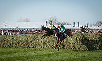 LIVERPOOL - APRIL 14: Pleasant Company #21 and #12 Ucello Conti take a fence at the Randox Health Grand National Steeplechase at Aintree Racecourse in Liverpool, UK (Photo by Sophie Shore/Eclipse Sportswire/Getty Images)