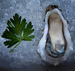 Local Hog Island sweetwater oysters are served at Osteria Stellina in Pt. Reyes Station, Calif., July 2, 2011.