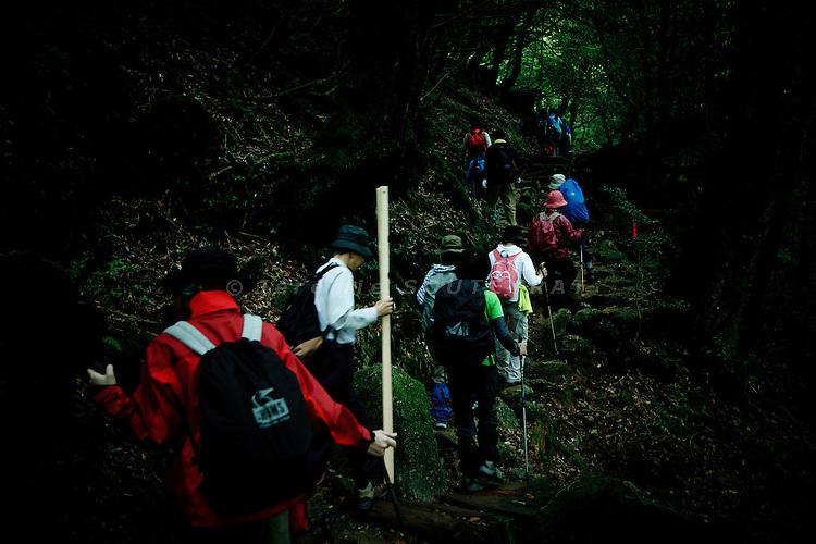 "Yakushima, June 2011 - Japanes tourists on Shiratani valley path, on the way to ""Mononoke forest"", which inspired Miyazaki for its animated fantasy film ""Princess Mononoke"" ."