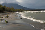A heron (garza) fishes in the choppy waves of Lake Cocibolca on la Isla de Ometepe, Nicaragua