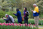 Netherlands, Keukenhof Gardens.  <br />