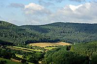 Blick von  Gotthardsruine auf  Odenwald, Bayern, Deutschland