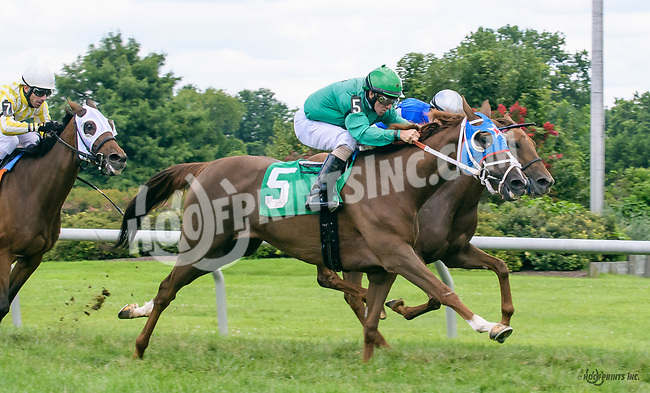 Fed Up Fired Up winning at Delaware Park on 7/26/17