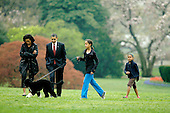 Washington, D.C. - April 14, 2009 -- The First Family shows off their new dog, Bo, on the South Lawn of the White House on Tuesday, April 14, 2009.   From left to right: First Lady Michelle Obama, United States President Barack Obama, Bo, Malia Obama, and Sasha Obama..Credit: CNP