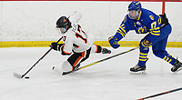 Madison West's Joseph Clark (right) gets penalized for tripping Verona's Parker Ploc, as Madison West takes on Verona in Wisconsin Big Eight conference boys high school hockey on Friday, 1/3/20 at the Verona Ice Arena
