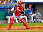 8 March 2009: Washington Nationals' catcher Javier Valentin in action during a Spring Training game against the New York Mets at Space Coast Stadium in Viera, Florida. The Nationals defeated the Mets 8-3 in the Grapefruit League matchup. Mandatory Photo Credit: Ed Wolfstein Photo