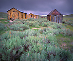 Bodie State Historic Park, CA   /<br /> Weathered garage buildings and field of sage under approaching storm clouds