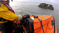 2017 04 17 RNLI save dog stranded on rock, Mumbles, UK