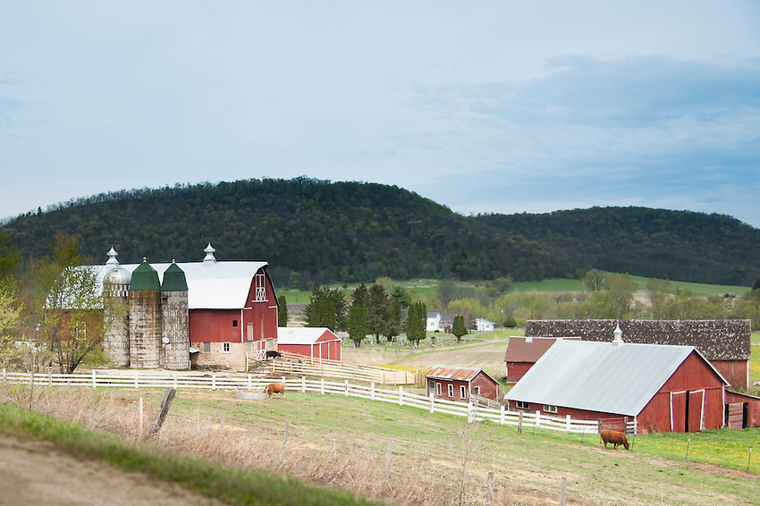 A small dairy farm in a valley of Wisconsin's Driftless Area.