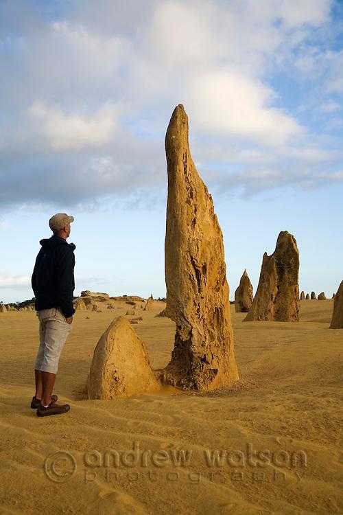 A tourist looks at the limestone pillars of the Pinnacles Desert in Nambung National Park.  Cervantes, Western Australia, AUSTRALIA.