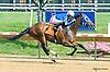 Fitzgerald winning at Delaware Park on 7/28/15