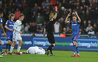 Bolton Wanderers' Craig Noone reacts to being shown a red card by referee Gavin Ward <br /> <br /> Photographer Kevin Barnes/CameraSport<br /> <br /> The EFL Sky Bet Championship - Swansea City v Bolton Wanderers - Saturday 2nd March 2019 - Liberty Stadium - Swansea<br /> <br /> World Copyright © 2019 CameraSport. All rights reserved. 43 Linden Ave. Countesthorpe. Leicester. England. LE8 5PG - Tel: +44 (0) 116 277 4147 - admin@camerasport.com - www.camerasport.com