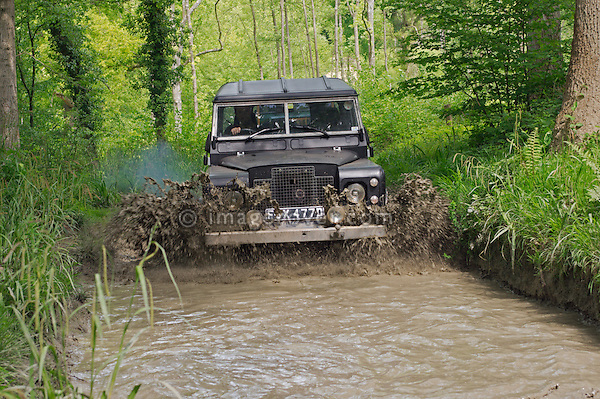 Series 3 Land Rover competing in the ALRC National 2008 RTV Trial and driving through flooded forest road after torrential rain. The Association of Land Rover Clubs (ALRC) National Rallye is the biggest annual motor sport oriented Land Rover event and was hosted 2008 by the Midland Rover Owners Club at Eastnor Castle in Herefordshire, UK, 22 - 27 May 2008. --- No releases available. Automotive trademarks are the property of the trademark holder, authorization may be needed for some uses.
