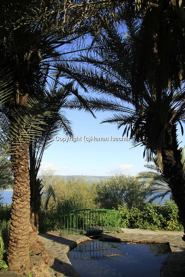 Israel, Lower Galilee, Ein Poriya overlooking the Sea of Galilee