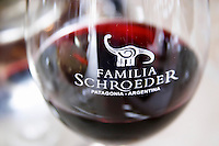 Detail of glass with the name engraved and a picture of a dinosaur. Bodega Familia Schroeder Winery, also called Saurus, Neuquen, Patagonia, Argentina, South America