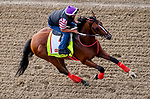 LOUISVILLE, KENTUCKY - MAY 02: Bodexpress, trained by Gustavo Delgado, exercises in preparation for the Kentucky Derby at Churchill Downs in Louisville, Kentucky on May 2, 2019. Scott Serio/Eclipse Sportswire/CSM