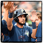 Third baseman Rigoberto Terrazas (9) of the Columbia Fireflies is congratulated after scoring a run in the fourth inning of a game against the Greenville Drive on Saturday, May 26, 2018, at Spirit Communications Park in Columbia, South Carolina. Columbia won, 9-2. (Tom Priddy/Four Seam Images)