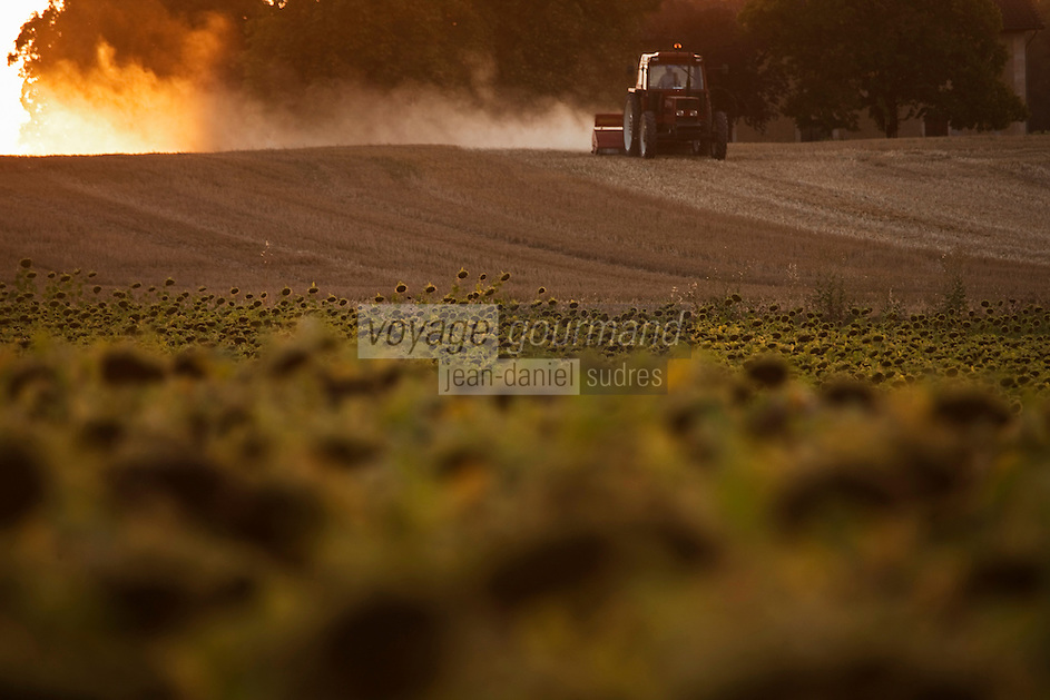Europe/France/Midi-Pyrénées/32/Gers/Env de Condom: Paysage agricole- Champ de tournesol et tracteur