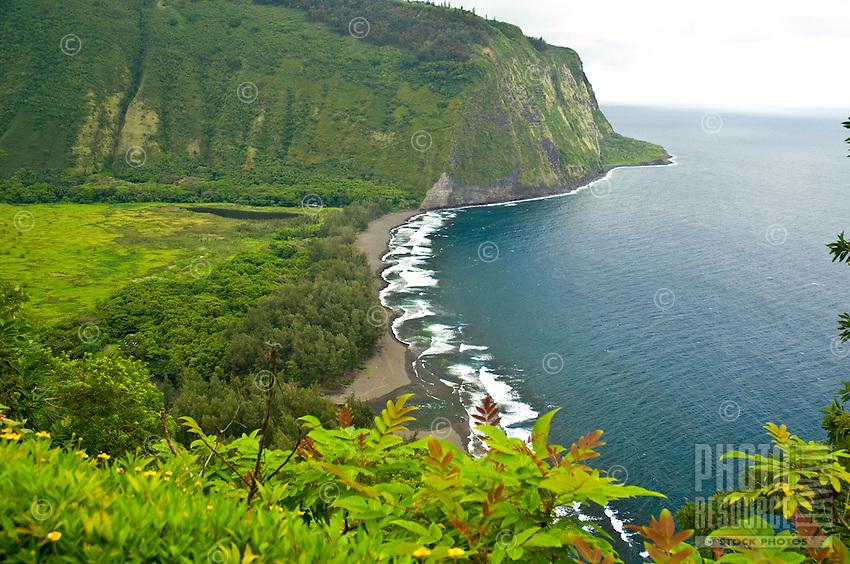 Looking down over Waipio Valley on the Hamakua coast of the Big Island of Hawaii