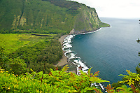 Looking down over Waipio Valley on the Hamakua coast of the Big Island of Hawaii