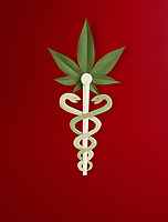 Paper sculpture of caduceus with marijuana leaf