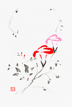 Beautiful red and pink Morning Glory flowers artistic oriental style illustration, Japanese Zen Sumi-e ink painting on white rice paper background