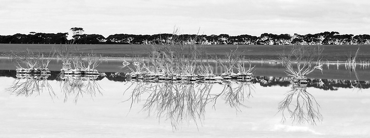 Kangaroo Island South Australia hundreds of salt lakes all over the island