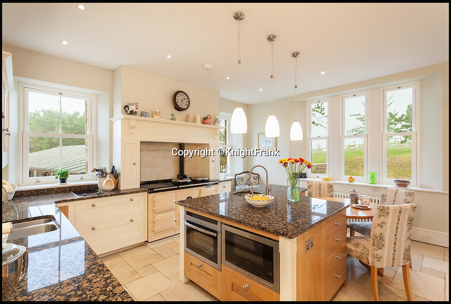 BNPS.co.uk (01202 558833)<br /> Pic: KnightFrank/BNPS<br /> <br /> The kitchen.<br /> <br /> Wine lovers will want to snap up this beautiful property which comes with its own ready-made business - an award-winning vineyard.<br /> <br /> Southcote Farm, near Honiton in Devon, has an attractive farmhouse and a mixture of farmland as well as about 23 acres of vines in an area of outstanding natural beauty near the coast.<br /> <br /> Owners Nigel and Dawn Howard transformed the former stud farm to create the vineyeard from scratch, planting their first vines in 2010.<br /> <br /> The Southcote Vineyard plantings are 11,000 Bacchus, 6,000 Pinot Noir and 6,000 Seyval Blanc over 20 acres and the Watchcombe Vineyard is about three acres with 1,000 Pinot Noir and 2,000 Seyval Blanc.<br /> <br /> The 54-acre farm is on the market with Knight Frank for &pound;1.95million.